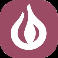 IoT-мінікомп'ютери Onion